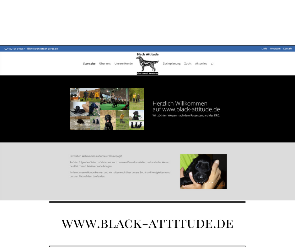 Black Attitude neue Webseite